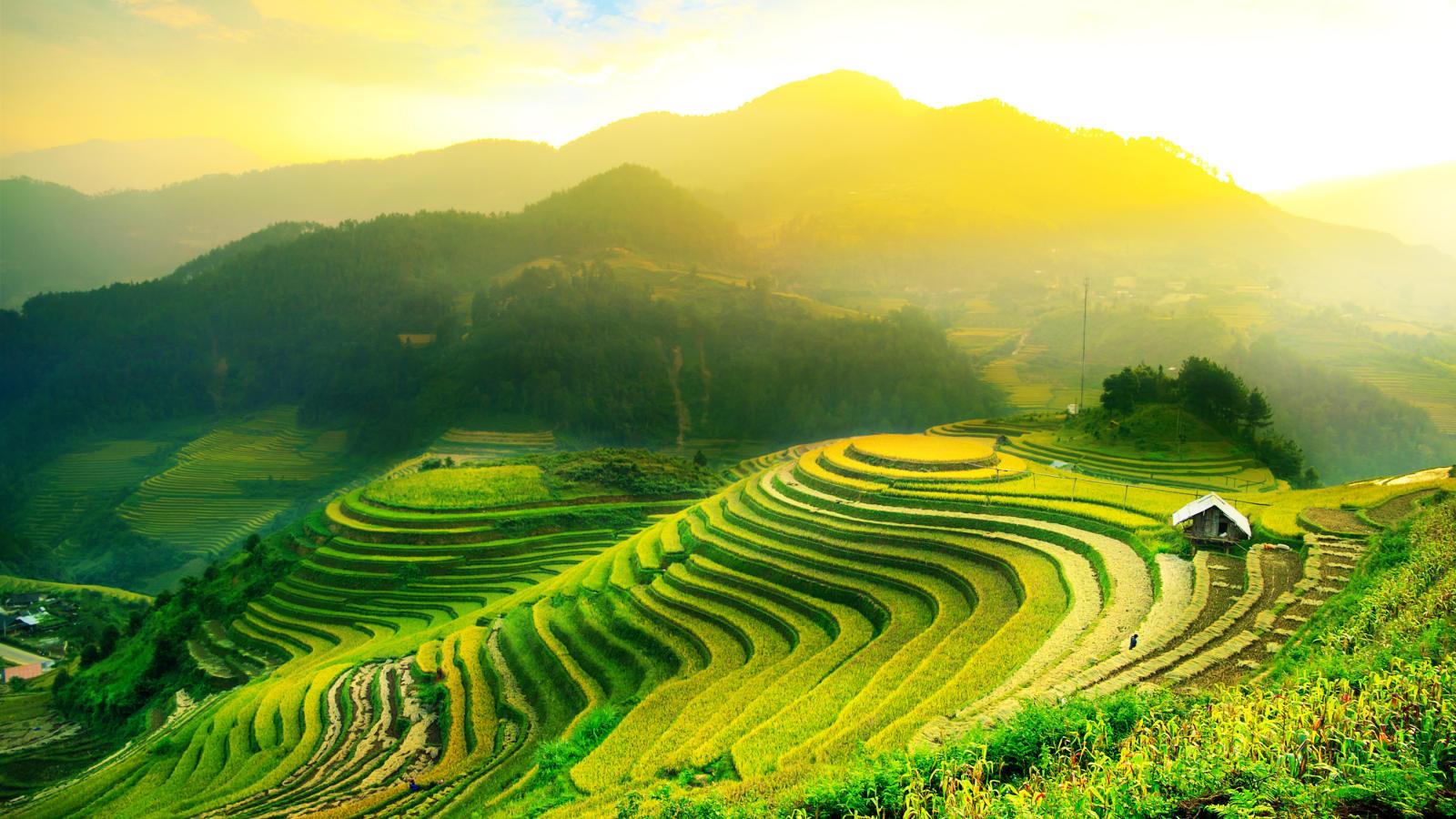 Bali Kembali Mendapat Traveler's Choice Award