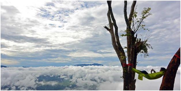 Wisata Negeri di Atas Awan Toraja Sulawesi Selatan