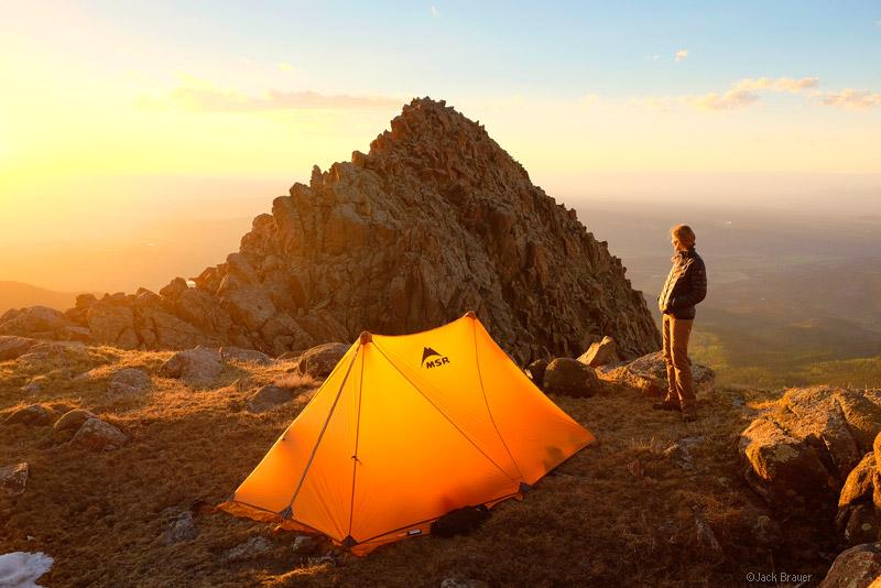 Bagi Traveler, 4 Tips Aman Berkemah di Hutan Tanpa Takut Hewan Liar.