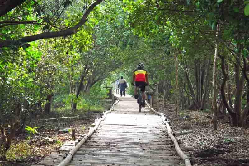 4 Taman Nasional yang Sedang Populer Di Indonesia