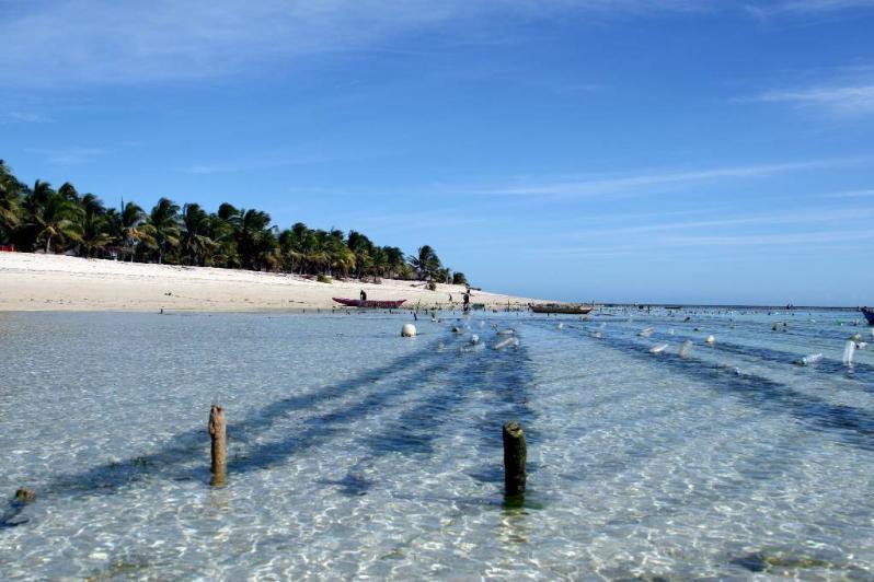 Yuk Intip Pantai Rii Taa di Nusa Tenggara Timur yang Memiliki Pasir Putih dan Merah Muda