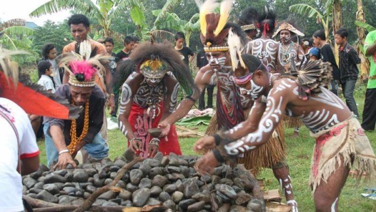 Yuk ! Saksikan Uniknya Upacara Bakar Batu di Tanah Papua