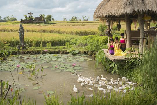 Nikmati Wisata Hits Baru di Bali, Desa Visesa !