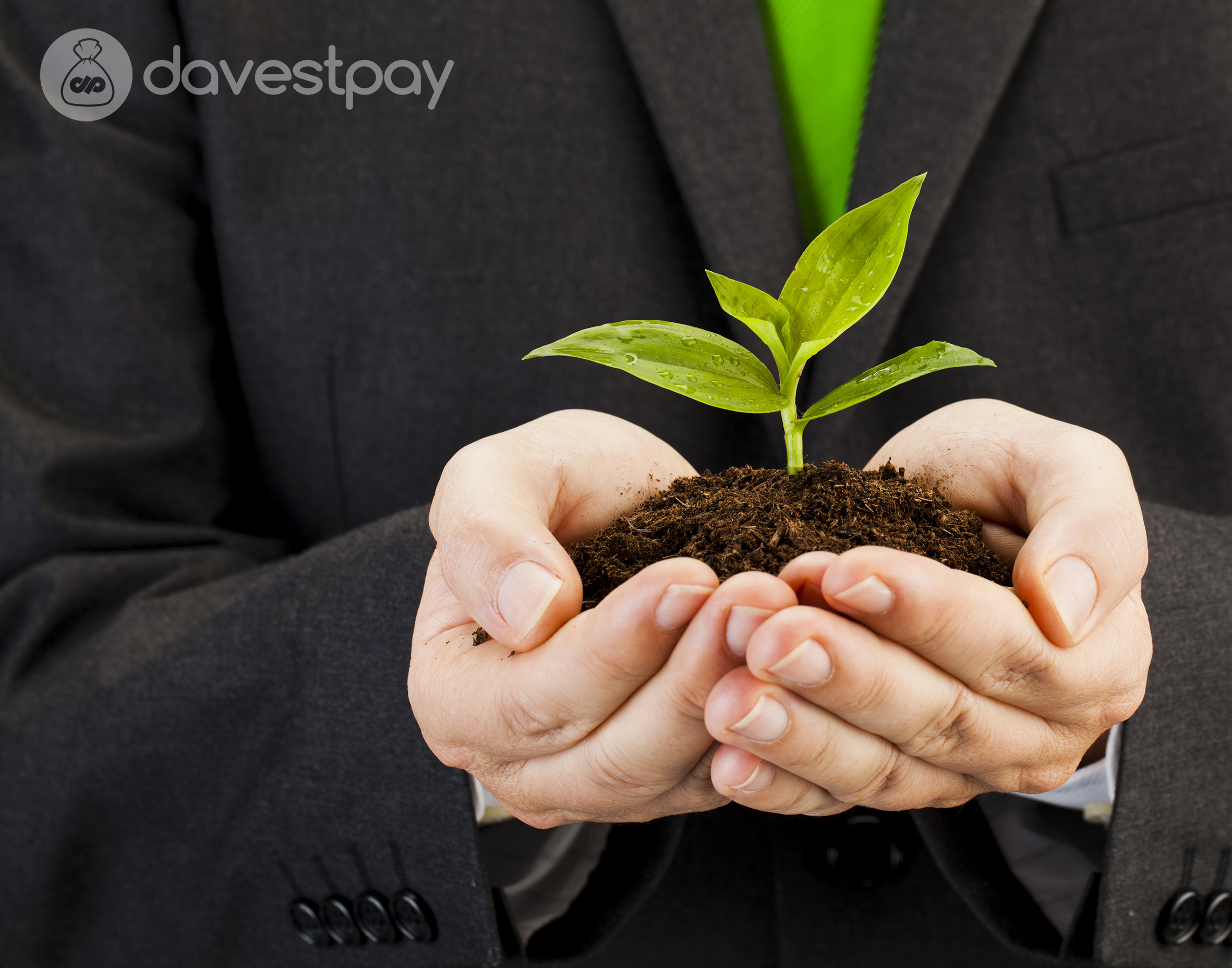 Simak Deretan Bisnis Ramah Lingkungan yang Bisa Digeluti !