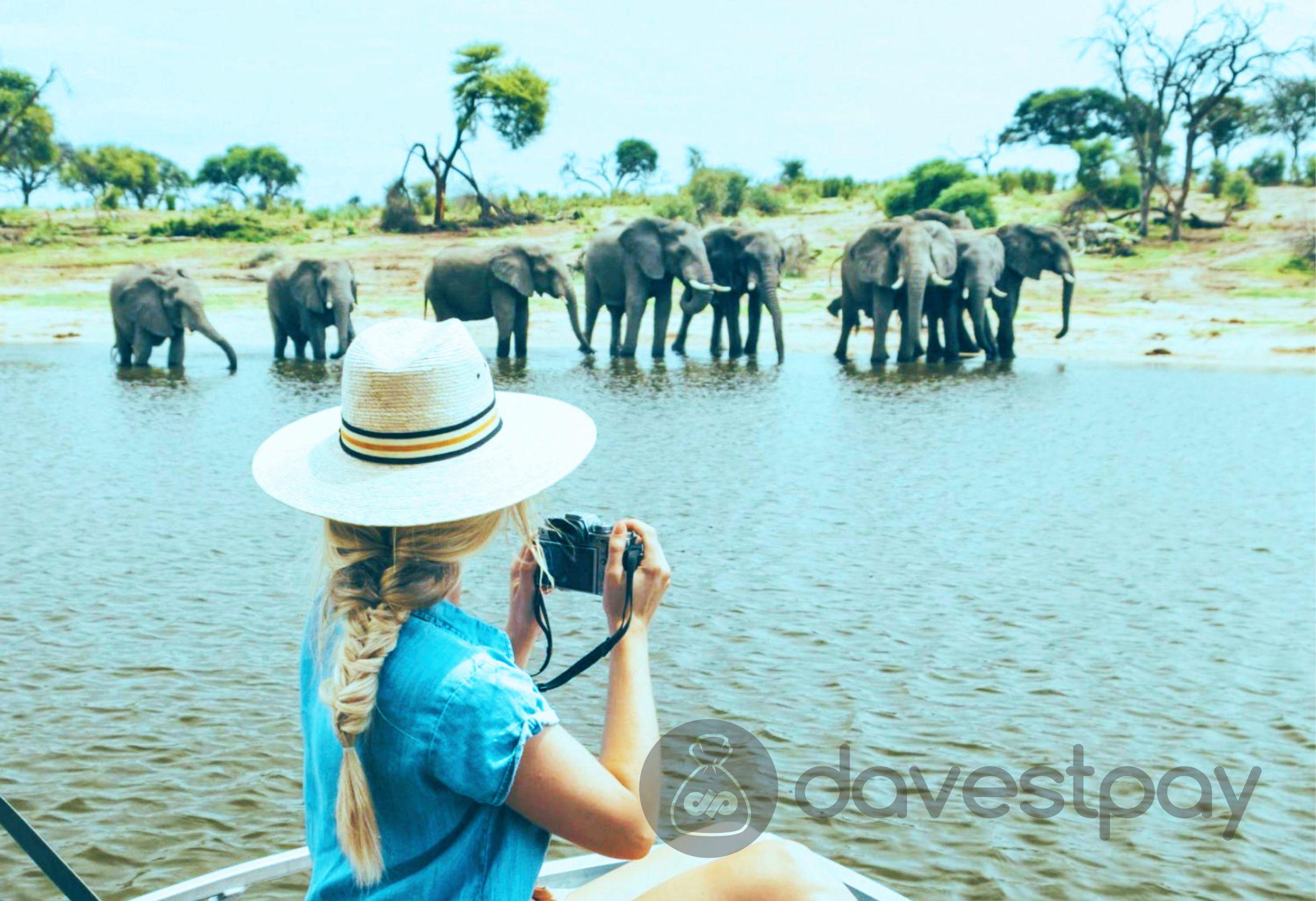 Ingin Sukses Jadi Travel Blogger? Lakukan 3 Tips Ini !
